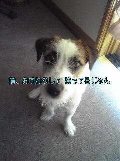 Image674.jpg