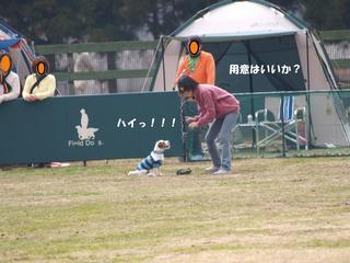 20100313_25.JPG