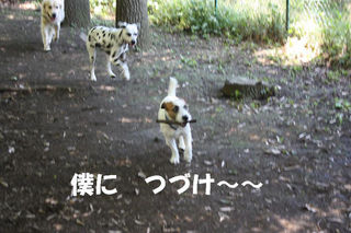 IMG_4835.JPG