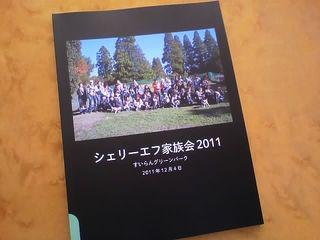 11-12-18_001.jpg